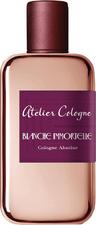 Blanche Immortelle
