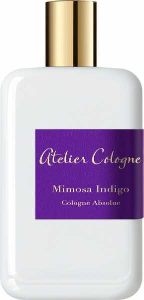 Mimosa Indigo